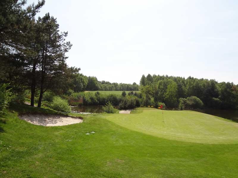 rasenigel_golfplatz7